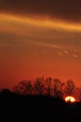 Photo 10, sunrise over Prince Edward (Lollipop477) Tags: trees ontario beautiful clouds sunrise geotagged picton