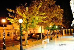 Christmas decorations at kifissia (g_athens [swaping]) Tags: christmas decorations light leaves yellow night  kifissia