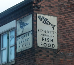Spratts (Sam Tait) Tags: old food fish brick sign point aquarium derbyshire signage canary mixture pos spratt spratts