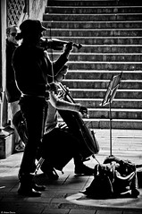 The Mall, Central Park. (Jrme Cousin) Tags: park new york city usa newyork apple brooklyn america mall big nikon stair manhattan united central violin contrabass states escalier unis 18105 violon contrebasse etats damerique d5000