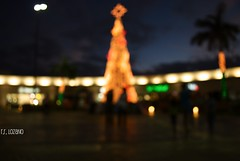 Happy Holidays (EXPLORED) (Mister Blur) Tags: blur mxico lights nikon bokeh dusk christmastree yucatn happyholidays merrychristmas citycenter ocaso picnik feliznavidad mrida d60 felicidades joyeuxnol silentnight toallmyflickrfriends sinadoconnor rocoeno