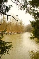 River Frame (Jim Emery) Tags: landscape parks metropark chagrinriver riverwater