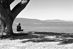 THE PATH OF LEAST RESISTANCE (mono version) (DESPITE STRAIGHT LINES) Tags: sea portrait usa man mountains tree nature water beauty grass mono nikon sitting view rest relaxation resistance admiration thepathofleastresistance d700 portbellingham ilobsterit