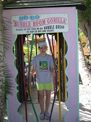 "Bubble Room on Captiva Island • <a style=""font-size:0.8em;"" href=""http://www.flickr.com/photos/43501506@N07/6613986845/"" target=""_blank"">View on Flickr</a>"