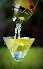 9/366 - Monday-itis (Renee Fowler) Tags: summer green water glass metal fruit bright drink lawn cocktail shaker droplet thumb 365 lime splash liquid thirsty 366 mondayitis