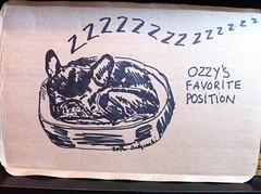 My First Drawing For 2012! (Lainey1) Tags: sleeping dog art illustration ink sketch drawing sleep sketching canine bulldog artsy cardboard frenchie frenchbulldog sharpie draw pup curledup bully ozzy 2012 iphone sleepingdog 010912