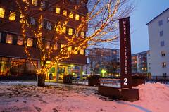 Tree of Light (henriksundholm.com) Tags: city trees windows winter snow sign buildings reflections table sweden dusk branches sverige trashcan hdr eskilstuna norr lightdecoration munktelltorget2