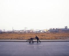 A man with cart. (wojszyca) Tags: road man mamiya mediumformat landscape 50mm industrial alone fuji epson 6x7 cart fujichrome katowice provia gossen rz67 100f 4990 rdpiii szopienice uppersilesia lunaprosbc