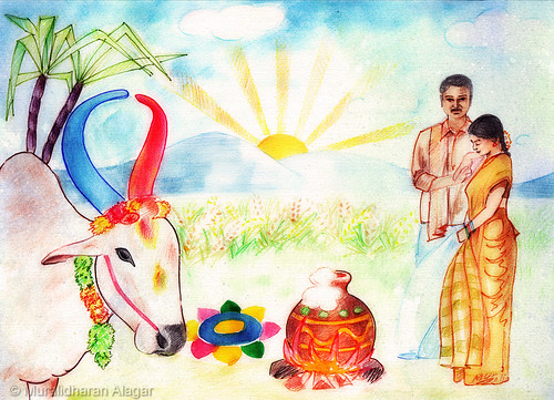 http://burnsnight2016.blogspot.in/2016/01/pongal-thought-to-harvest.html