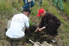 IMG_6334 (Caritas PSE) Tags: 2008 kab samosir penghijauan pusuk buhit
