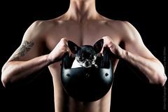 Marketing-photo-shoot-9 (Rob Orthen) Tags: dogs koiria roborthenphotography mainoskuvaus koirakuvaus