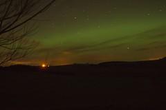 22-1-12 (Copperhobnob) Tags: sky eye stars aberdeenshire explore aurora portfolio northernlights auroraborealis copperbeech landscapecomp