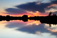 Sunset Rings for Aunt Theresa (NaturalLight) Tags: park sunset water creek reflections rings kansas wichita chisholm chisholmcreekpark