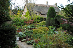 Hidcote Manor Garden (Mark Wordy) Tags: gardens garden topiary gloucestershire nationaltrust walled hedges artsandcrafts thatchedcottage hidcote englishcountrygarden hidcotemanorgarden lawrencejohnston thatchesroof