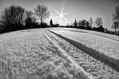 Into the Sun (baumbaTz) Tags: schnee bw sun snow canon germany deutschland rebel kiss wasser snowy freezing fisheye handheld sw 8mm sonne walimex hdr x3 niedersachsen 500d jork monocrhome samyang t1i neuenschleuse