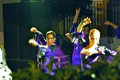 DSC_0405 (Hombre Del Gente) Tags: night de sept flamenco 2010 libar jimera a