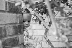 Reese Peeking around the Brick (donnierayjones) Tags: portrait blackandwhite bw baby tree brick girl pose bush posing down peek around behind peeking