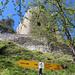 Wegweiser an der Ruine Homburg