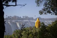 and watch it fall (timsnell) Tags: africa plants green nature water yellow landscape waterfall depthoffield zimbabwe victoriafalls raincoat matabelelandnorth