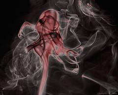 Ethereal Siren (Smoke 3) (skippys1229) Tags: canon rebel 50mm smoke ghost ethereal ghostly siren ocala marioncounty ghostlyfigure strobist ocalafl ocalaflorida smokephotography marioncountyfl rebelt1i t1i canonrebelt1i