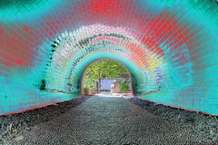 Solarized Tunnel (BrianMoranHDR) Tags: trees sanantonio photography texas surreal tunnel fisheye solarized hdr riverwalk postprocessing satx mysa hdrsoft topazlabs niksoftware colorefexpro3 canon5dmarkii viveza2 adobephotoshopcs5extended denoise5 silverefexpro2 photomatixpro402 canon815mmlfisheye