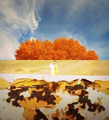 Fall (Mattie & Den) Tags: newmexico flavor nm picnik lascruces mesilla southernnewmexico lascrucesnewmexico