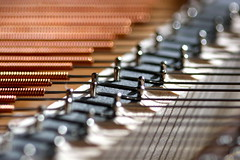 Piano strings (kevin dooley) Tags: macro horizontal closeup canon wire post bokeh piano sigma string strings wound f28 kawai gx 105mm pianostrings 40d pianostring gx10k