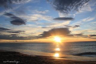 Un matin à la mer - Blue Planet