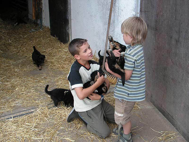 Noudlsberger Hof - Kinder mit Hundebabys