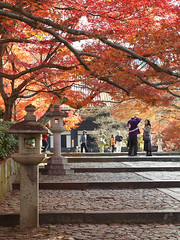 autumn delight, kyoto (k n u l p) Tags: autumn red fall leaves temple maple kyoto olympus 京都 紅葉 ep1 もみじ zd shinnyodo 1454mm 真如堂 でもそろそろ見納めかな