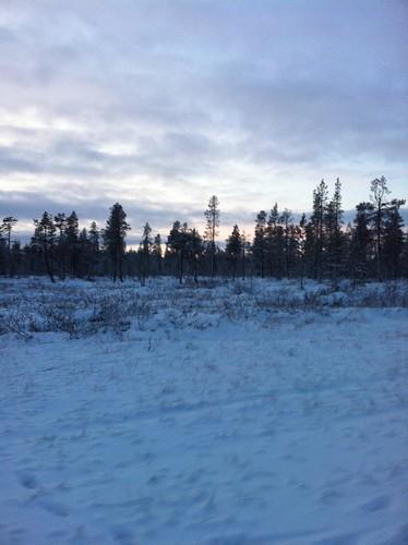 111206_Lappland_ 070