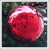 (jordi.martorell) Tags: christmas xmas red tree london geotagged navidad nikon guessed bola bauble guesswherelondon 1855mmf3556g nadal gwl d40 nikond40 guessedbyanya123