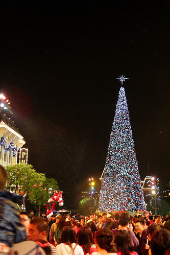 Hong Kong Disneyland Christmas Tree