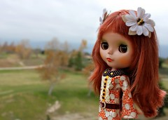 """my new dolly"""