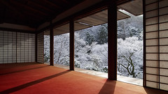 winter morning kyoto (k n u l p) Tags: morning blue winter sunlight snow tree ice temple kyoto olympus 京都 雪 ep1 世界遺産 zd 1122mm kozanji 高山寺 石水院