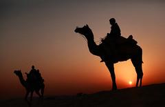 india (peo pea) Tags: sunset india tramonto dune tar rajasthan deserto cammello rajsthan colorphotoaward