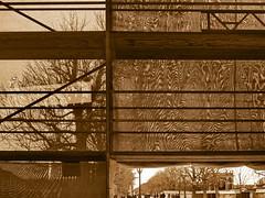 Through the Mask - Shrouded Schlo Schnbrunn (hedbavny) Tags: light shadow ast branch sightseeing scaffold shroud renovation verpackung schatten baum shrouded pavillon packed netz allee schleier restauration sehenswrdigkeit gerst restaurierung schnbrunnpalace schlosstheater wienvienna eingepackt sterreichaustria verschleiert maskiert potemkinschesdorf eingerstet schlosschnbrunn potemkinfacade eingangschlosstheater musiktheaterschnbrunn