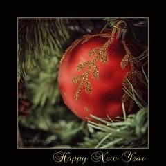 Happy 2012 (in eva vae) Tags: red macro canon dof bokeh greeting happynewyear 2012 inevavae flickrstruereflection1