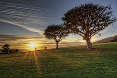Flare (BobbyGibbons) Tags: california trees sun tree green clouds canon la losangeles january malibu lensflare flare pepperdine hdr photomatix losngeles flickraward hdraward canon5dmrkii crazybobby cloudsstormssunsetssunrises
