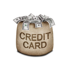 Credit Card Behavior Scores