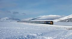 47641 Crubenmore (delticfan) Tags: snow day class 47 47641 highlandmainline crubenmore pwwinter