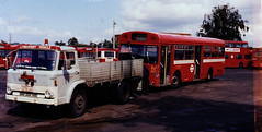 AEC Swift SMS262 EGN262J going for scrap behind Ford D series 1987F - my personal favourite bus photo of all that I have taken (sms88aec) Tags: sms262 swift aec scrap going for behind ford d series 1987f 1970 egn262j