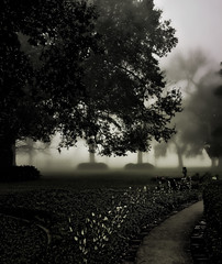 foggy morning at Ormond Plantation (praline3001) Tags: new morning tree history fog garden landscape photography photo oak orleans louisiana south neworleans ghost indigo historic haunted sugar civilwar liveoak plantation mississippiriver bedandbreakfast americanrevolution cajun 1812 plantations historiclandmark destrehan quercusvirginiana ormondplantation louisianacolonial mygearandme mygearandmepremium mygearandmebronze mygearandmesilver mygearandmegold canonrebelt3i pierredtrepagnier colrichardbutler garconnieres basilelaplacejr briquettesentrepoteaux