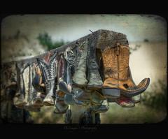 In Search of the Barefoot Cowboy (DeVaughnSquire) Tags: thanks cowboy shoes boots entrance textures footware saskatchewan prairies sanddunes cowboyboots nailed skeletalmess kimklassen sandwassohotthisday