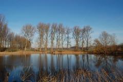 Mooie Zak van Zuid-Beveland (Omroep Zeeland) Tags: de is zeeland januari weer weel prachtig weerbericht zelfs weerfoto omroepzeeland weersverwachting zwaakse weerinzeeland