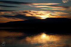Sunset on Lake Lipno (medXtreme) Tags: sunset sun reflection reflex wasser europa europe sonnenuntergang lakes tschechien tschechischerepublik reservoir czechrepublic seen sonne stausee talsperre gewsser artificiallake esko eskrepublika schwarzbach lichtreflex jihoeskkraj inlandwater binnengewsser widerschein stretchofwater ernvpoumav sonnenreflex okreseskkrumlov dolnndrlipno stauseelipno campingolsina talsperrelipno
