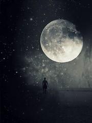 moonlight (Kasia Derwinska) Tags: bw moon luna bn moonlight tarotcards kasiaderwinska fairytalesaboutheavenandhell enlaluzdelaluna