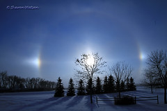 Sundogs (parhelion) (Sharon's Bird Photos) Tags: winter northdakota parhelion sundogs 12degrees explored traillcounty cloudsstormssunsetssunrises 191january192012