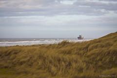 Aztec Maiden @ Wijk aan Zee 2 (Wilco Schippers) Tags: strand zee wijkaanzee vrachtschip ramptoerisme vastgelopen gestrand vlotgetrokken ramptoeristen aztecmaiden