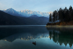 Holding the breath... (Robyn Hooz) Tags: trees lake mountains cold water alberi canon lago eos mirror breath wideangle pines acqua freddo friuli pini barcis 600d ef1740l fiato